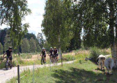 Cyklister m kor