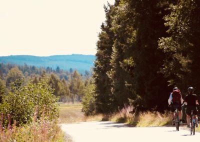 Cyklister på väg 2