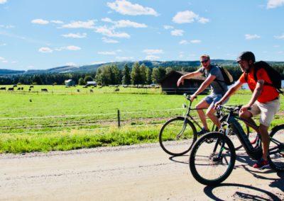 Glada cyklister